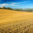 Stock Photo: Belvedere of Tuscany