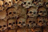 Wall full of skulls — Stock Photo