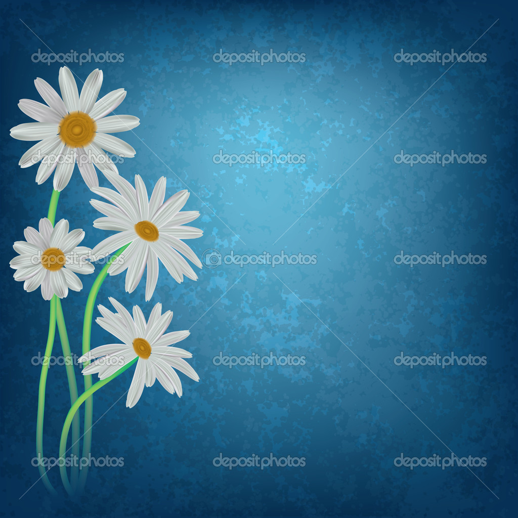 Abstract floral background with chamomiles on dirty blue — Stock Vector #5625435