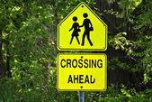 School Crossing Sign — Stock Photo