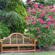 Garden Bench and a Rose Bush — Stock Photo #5995112