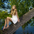Young sensual lady on tree - Stock Photo