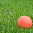 Orange lacrosse ball on grass — Stock Photo