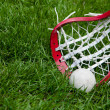 Stock Photo: Girls lacrosse head and grey ball on grass
