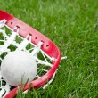 Girls lacrosse head and grey ball on grass — Stock Photo
