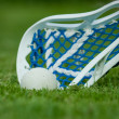 Lacrosse stick with ball on grass — Stock Photo