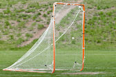 Lacrosse ball in net for a goal — Stock Photo