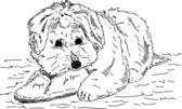 Pup met schoen — Stockvector
