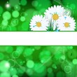 Abstract  background with daisies and grass and drops. — Stock Vector