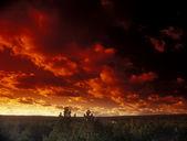 Ominous crimson sky. — Stock Photo