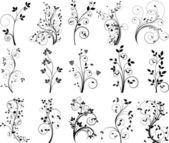 Floral design vector set — Stock Vector