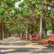 Relax on a park bench — Stock Photo