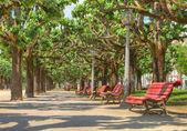 Relájese en un banco del parque — Foto de Stock