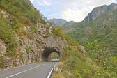 Road tunnel in green Tara Canyon, Montenegro — Stock Photo