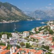 Kotor town in bay, Montenegro — Stockfoto