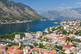 Kotor town in bay, Montenegro — Stock Photo