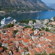 Old Kotor town in bay, Montenegro — Stockfoto