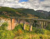 Tara canyon bridge, Montenegro — Stock Photo
