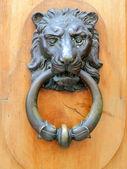 Door knocker — Stock Photo