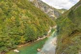 River Tara canyon, Montenegro — Stock Photo