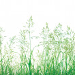 Abstract Meadow Grass Background Isolated — Stock Photo