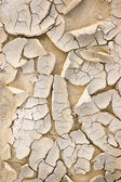 Dried Ground Macro Closeup Texture Background — Stock Photo