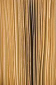 Slightly open book pages closeup background in sepia — Stock Photo
