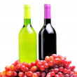 Two bottles of wine and the red grape isolated — Stock Photo #6691109