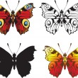 Set of decorative butterflies isolated on white background — Stock Vector