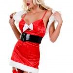 Sexy Christmas Elf — Stock Photo #6638031
