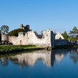 Ruins of Adare castle with reflection - Stock Photo