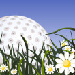 Golf ball on the grass - Stock Vector