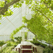 Stock Photo: Cosy conservatory greenhouse