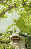 Cosy conservatory greenhouse — Stock Photo