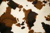 Cowhide dapple — Stock Photo