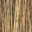 Stock Photo: Straw Texture