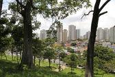 View over Sao Paulo — Stock Photo