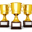 Three Trophies — Stock Photo #6296992