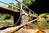Bro över en flod i bahia — Stockfoto