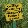 Stock Photo: Poison Ivy Sign