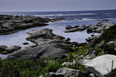 Near Peggys Cove — Stock Photo