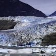 Mendenhall Glacier — Stock Photo #6249835