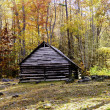 Old Cabin in the Smoky Mountains - Stock Photo