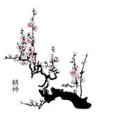 Sakura blossom — Stock Vector