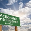 Stock Photo: Actionable Intelligence Green Road Sign