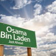 Stock Photo: OsamBin Laden Green Road Sign