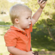 Cute Young Baby Boy with Pine Cones in the Park — Stock Photo #5549953
