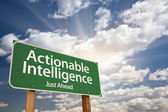 Actionable Intelligence Green Road Sign — Stock Photo
