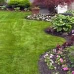 jardim bem cuidado — Foto Stock