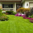 Manicured Yard - Stock Photo